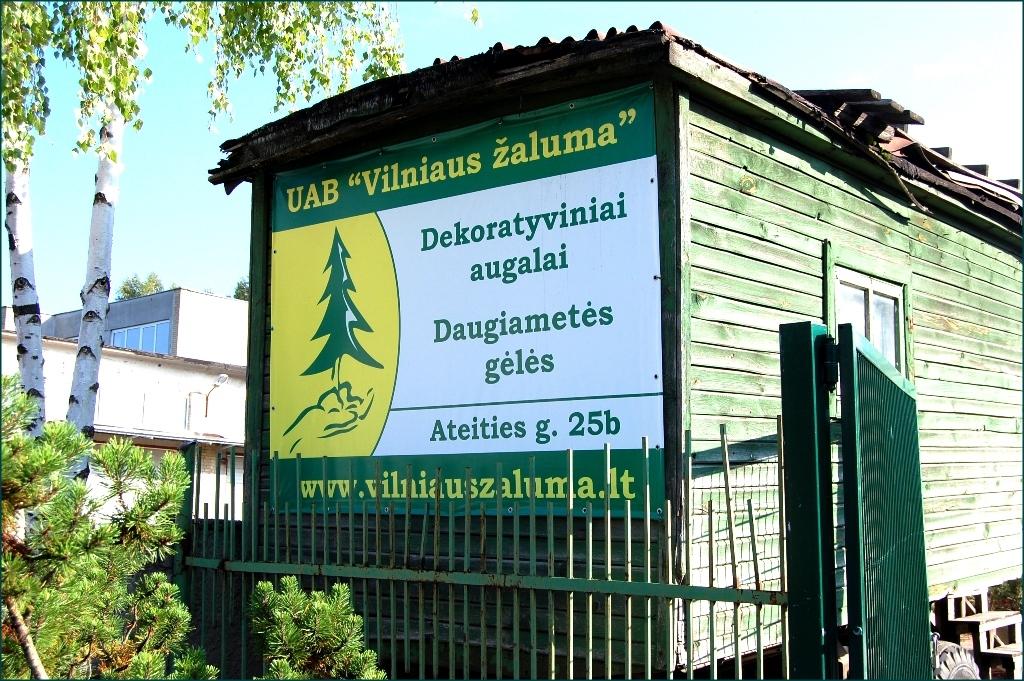 Image 3 Zaluma Tree Nursery