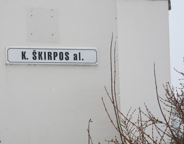 Skirpos-al-in-central-Vilnius