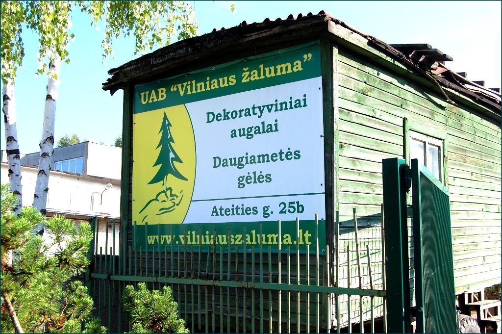 Image 3 Zaluma Tree Nursery